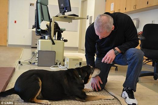 Hiện tại người ta đang tiếp tục nghiên cứu để xem Frankie có thể xác định các căn bệnh ung thư khác không. (Ảnh: Daily Mail)