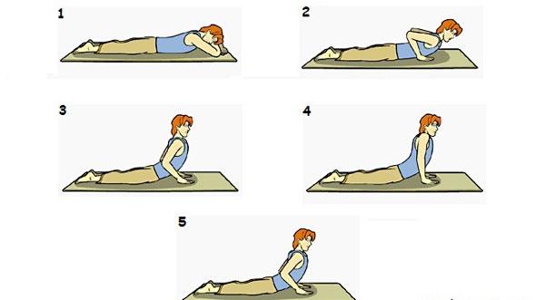 Các bước thực hành bài tập Cobra. (Ảnh: Internet)