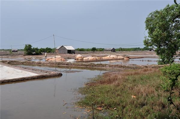 Bật mí đường tắt đến đảo Long Sơn, đi qua ruộng muối cực thú vị