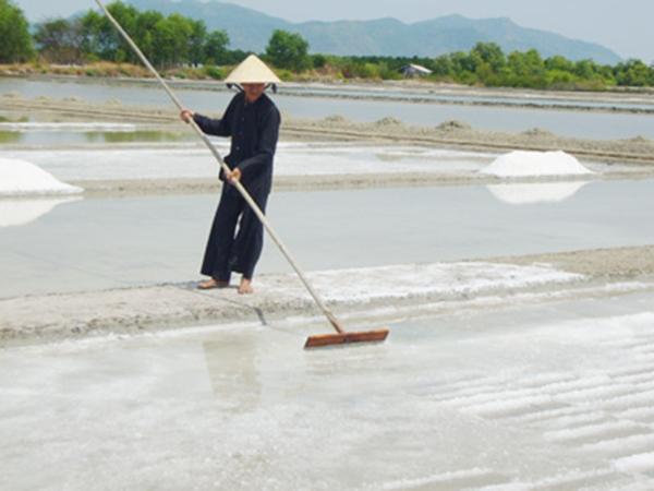 Một ruộng muối ở Long Sơn. (Ảnh: Internet)