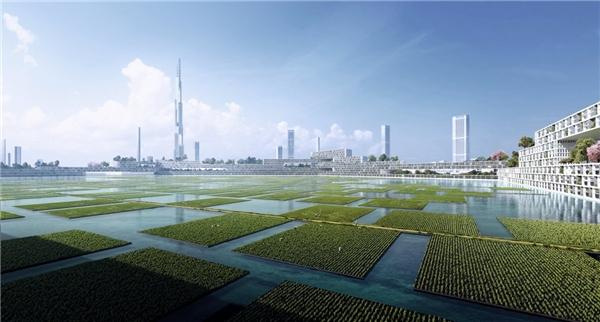 Bên trong các hình lục giác này là nhiều ruộng lúa nổi, cũng như các ruộng nuôi tảo (được sử dụng làm nhiên liệu). (Ảnh: Tech Insider)