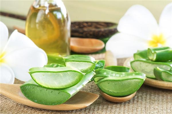 Sự kết hợp giữa tinh dầu và nước ép nha đam là một phương pháp dưỡng ẩm tuyệt vời. (Ảnh: Internet)