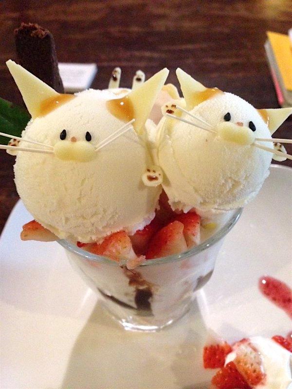 """Nếu có dịp đến chơi thành phố Kyoto, đừng quên """"săn lùng"""" những em mèo đáng yêu này nhé.(Ảnh: Internet)"""
