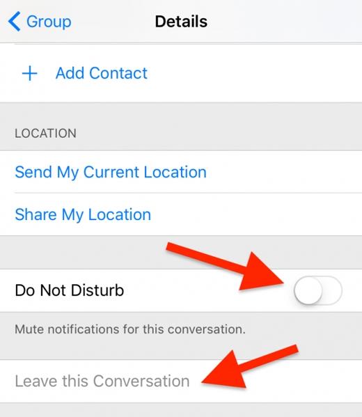 Ngừng nhận tin nhắn hoặc rời nhóm: tương tự, bấm vào nút Details, chọn Do Not Disturb để ngừng nhận tin nhắn, và chọn Leave this Conversation để rời nhóm. (Ảnh: wonderfulengineering)