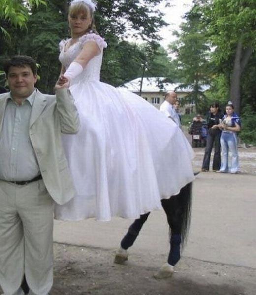 | Ủ uôi, cô dâu chân dài vậy sao?