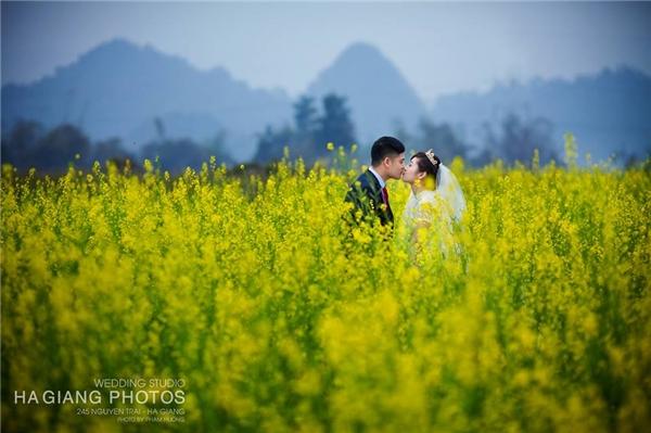 Sau hơn 1 năm yêu nhau thì cặp đôi dễ thương này đã được sự chấp thuận của gia đình để tiến tới hôn nhân.(Ảnh: Internet)