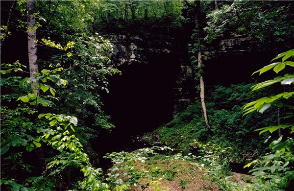Bạn có tò mò hay sợ phải đi vào hang động từ đất đá? (Ảnh: Internet)
