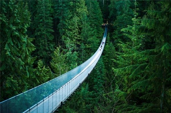 Những cây cầu vi diệu khiến bạn thấy như lạc vào xứ thần tiên