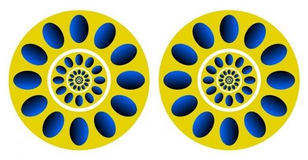 Bạn có thấy hai vòng tròn này đang xoay? (Ảnh: Internet)