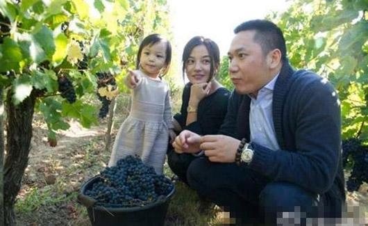 Triệu Vy trở thành một trong những tỉ phú trẻ trên thế giới