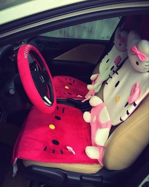 Bên trong xe, Hằng cũng bọc ghế và vô lăng của mình bằng miếng đệm con mèo này. (Ảnh: Internet)