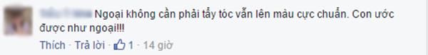 Bình luận của T.Y.N. (Ảnh: Ảnh chụp màn hình từ FBNV)