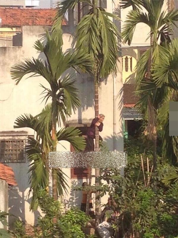 Được biết hiện cụ ông đang sinh sống cùng gia đình tại Phú Thọ. (Ảnh: Internet)