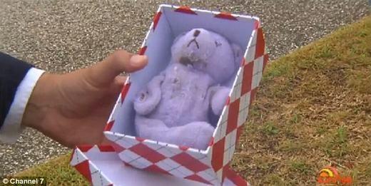 Con gấu bông sau khi được làm sạch và trả cho người chủ. (Ảnh: Channel 7)