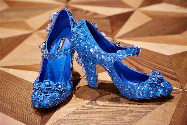 Các thiết kế giày của Dolce and Gabbana vẫn sử dụng những phom dáng cổ điển, truyền thống. Tuy nhiên, mỗi thiết kế lại mang một màu sắc riêng biệt. Cùng sử dụng họa tiết hoa, đinh tán làm điểm nhấn; nếu như sắc đen mang đến vẻ ngoài mạnh mẽ, cá tính; tông vàng quý phái, sang trọng thì tông xanh cobant lại khắc họa nét trẻ trung, tươi mới.