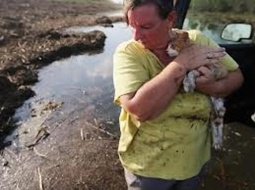 Người phụ nữ 5 lần mất nhà vì bão lớn. (Ảnh: Internet)