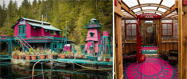 """Nơi này được đôi vợ chồng đặt tên là """"Freedom Cove"""" (tạm dịch: Vịnh nhỏ yên bình)."""
