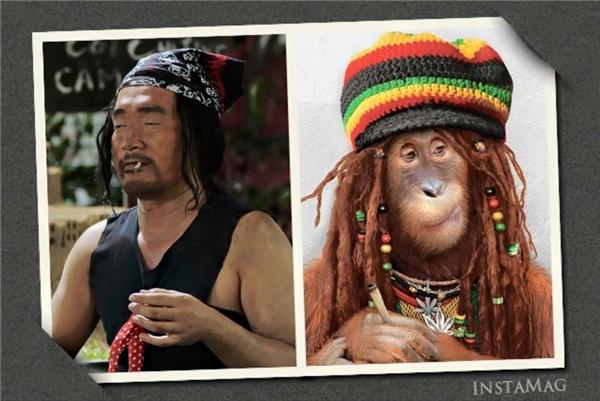 """Trên trang cá nhân, Thu Trang cũng tự dìm hàng ông xã Tiến Luật với hình ảnh so sánh với chú khỉ """"không thể giống hơn"""". - Tin sao Viet - Tin tuc sao Viet - Scandal sao Viet - Tin tuc cua Sao - Tin cua Sao"""