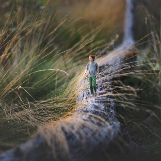 Đường mòn.(Ảnh: Fiddle Oak)