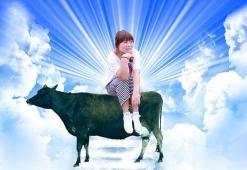 """Thêm vào một con bò và hào quang thì thành """"thần"""". (Ảnh: Internet)"""