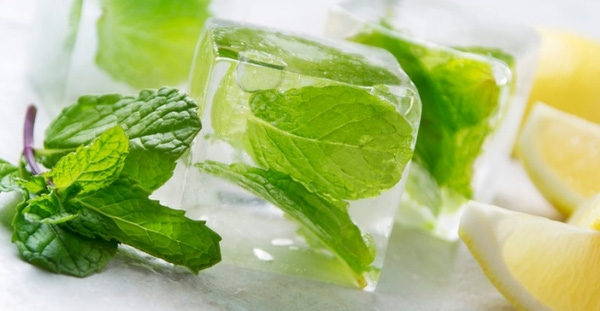 13. Ướp lạnh lá bạc hà trong nước đá như thế này sẽ giúp giữ được vị ngon và chất dinh dưỡng cho đến khi sử dụng.