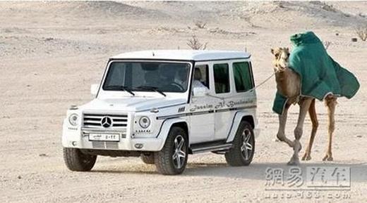 Một vị đại gia khác thì vừa lái xế hộp vừa dắt lạc đà đi dạo trong sa mạc. (Ảnh: Internet)