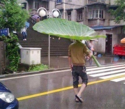 """Câu """"dân chơi không sợ mưa rơi"""" ai nói là sai? (Ảnh: Internet)"""