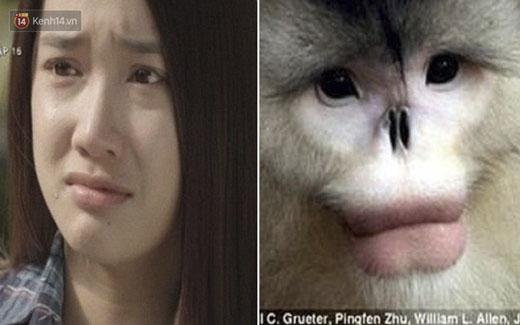 """Nhã Phương và cô bạn khỉ đọ độ """"diễn sâu"""""""