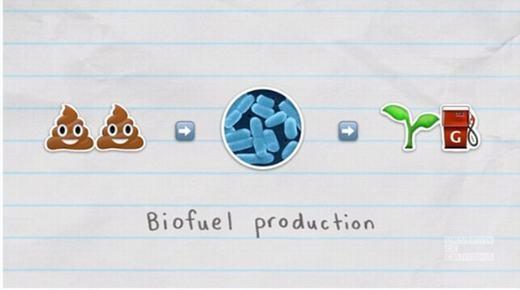 Cách để người ta có thể tạo xăng sinh học từ phân. (Ảnh: Internet)