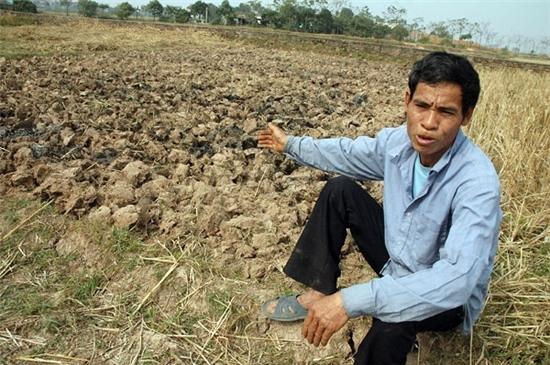 Nông dân, nông nghiệp đang gánh chịu hậu quả từ thời tiết khí hậu bất thường. Ảnh: Đ.T
