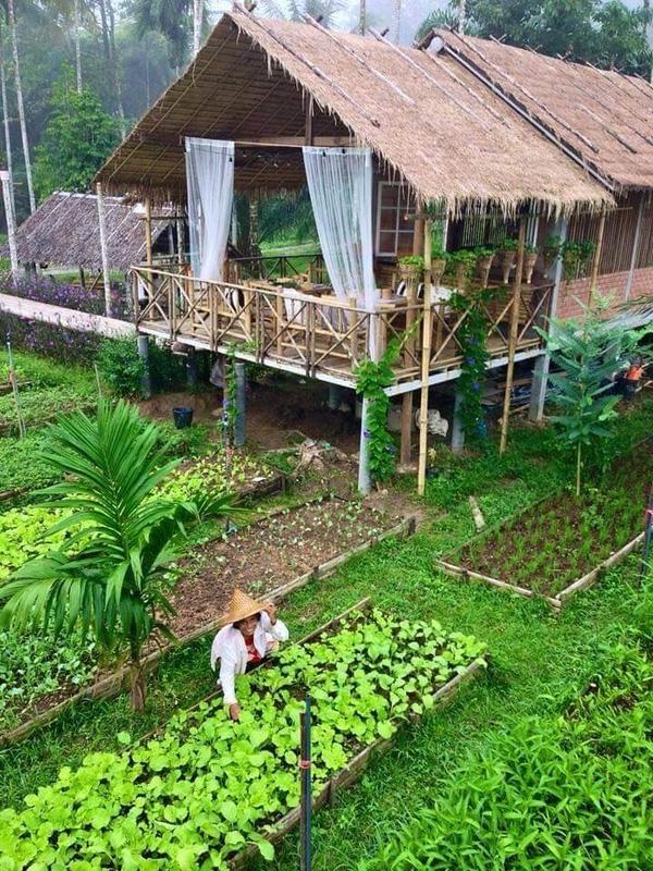 Màu xanh tươi mát bao trùm khắp khu resortBaan Rai I Arun.(Ảnh: Internet)