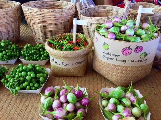Nguyên liệu của các bữa ăn đều là sản phẩm thu hoạch từ vườn rau xung quanh resort.(Ảnh: Internet)