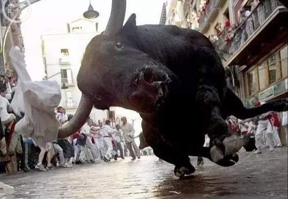 Một chú bò tót đang lao về phía máy chụp ảnh trong một trận đấu bò ở Tây Ban Nha. (Ảnh: Internet)