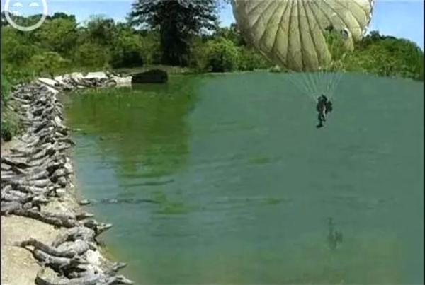 Người lính nhảy dù rớt xuống đầm cá sấu. (Ảnh: Internet)