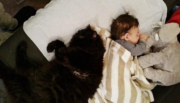 Tình yêu và mối liên kết không thể lí giải này bắt đầu ngay từ lúc cậu bé Sean chưa có mặt trên đời. (Ảnh: Bored Panda)
