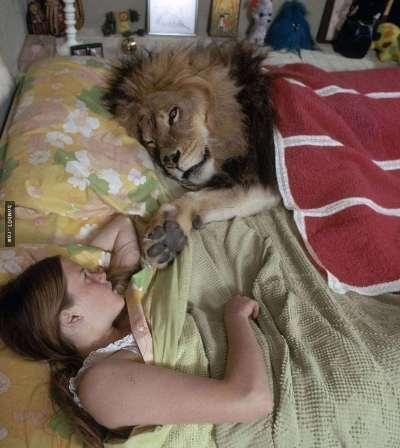 Việc để Melanie và Neil ngủ cùng nhau khiến bà Hedren vô cùng hối hận sau này. (Ảnh: Internet)