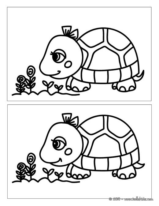 Bạn nhìn thấy điểm khác nhau nào đầu tiên trong hai tấm ảnh này? (Ảnh: Internet)