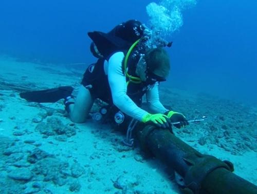 Tới ngày 18/3 mới hoàn tất việc bảo trì tuyến cáp quang AAG.