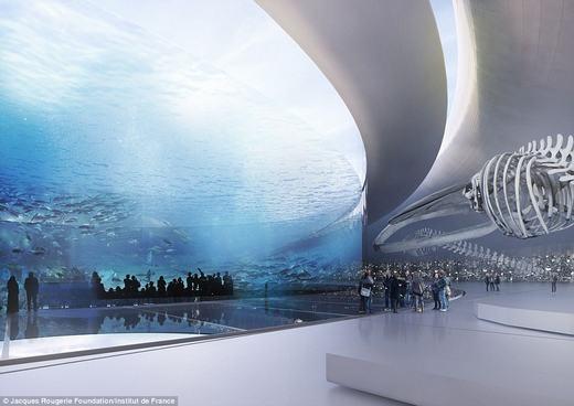 Du khách có thể tham quan đảo, chiêm ngưỡng khung cảnh tuyệt vời dưới đáy đại dương...