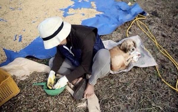Xuất hiện tại chợ trời, Lee Hyori bị nghi đang mang thai