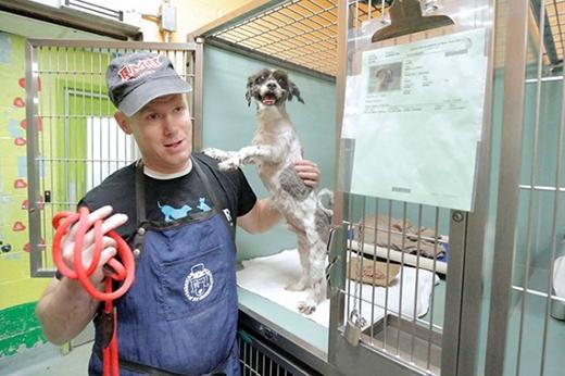 Mark Imhof bên cạnh một chú chó lớn tuổi chưa tìm được chủ. (Ảnh: Internet)
