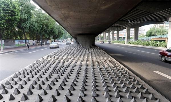 Nhìn bàn chân ởkhu vực dưới gầm cầu tạiQuảng Châu Trung Quốc này, bạn có cảm thấy rợn người?(Ảnh: Internet)