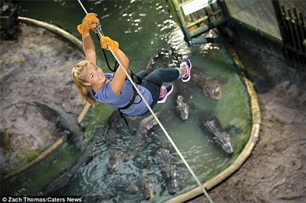 Khoảng 200.000 người đổ về vườn thú 123 năm tuổi này để thử thách bản thân.(Ảnh: Daily Mail)