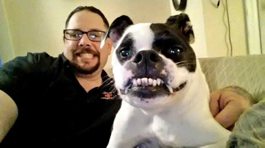Gặp gỡ chú chó dị thường bị hiểu lầm là do Photoshop