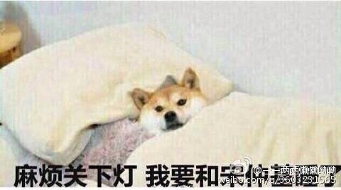 """""""Làm ơn tắt đèn, tôi muốn ngủ cạnh Song Joong Ki!"""""""