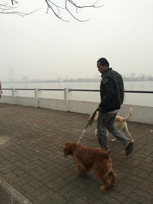 Theo ghi nhận của PV, hầu hết chó không được rọ mõm khi ra đường