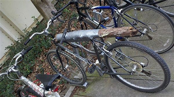 Mất yên xe đạp? Đừng lo, hãy làm theo cách như trong ảnh.