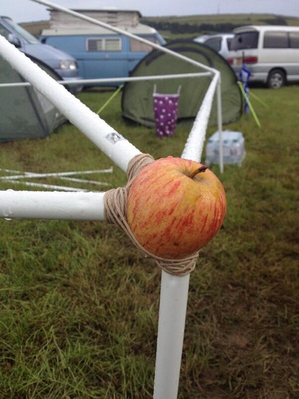 Vấn đề đặt ra là: tại sao lại là quả táo?(Ảnh: Bored Panda)