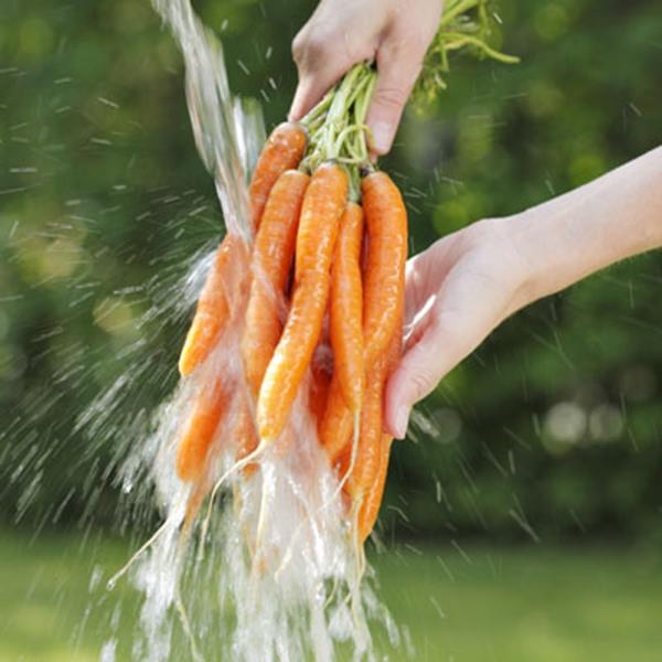 Rửa rau kĩ lướng để đảm bảo sức khỏe cho gia đình. (Ảnh: Internet)