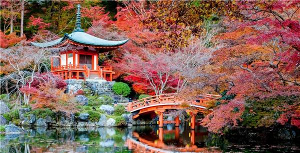 Mùa thu tuyệt đẹp ở Nhật Bản.(Ảnh: Internet)